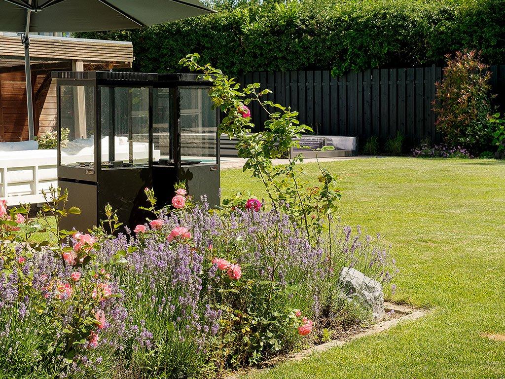 Gartengestaltung mit Pool, Bepflanzung und Rasenroboter in Bramsche Pflanzen Pflanzarbeiten