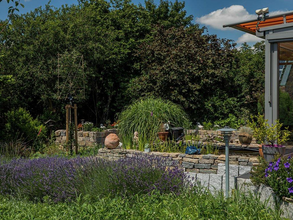 Wilder Gartenteich mit Sichtschutz Osnabrück