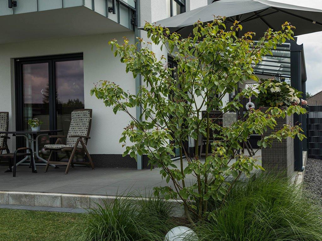 Moderner Garten Mehrfamilienhaus Laggenbeck Sitzecken