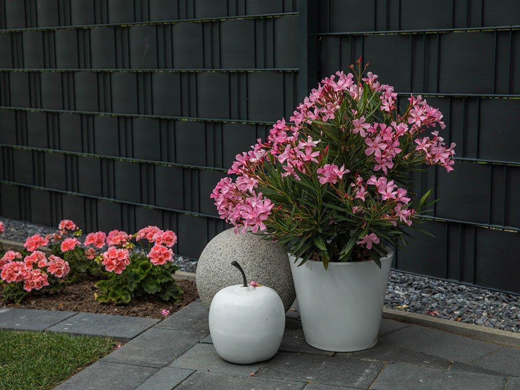 Moderner Garten Mehrfamilienhaus Laggenbeck Deko und Pflanzen