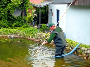 Poolpflege und Teichreinigung in Osnabrück und Ibbenbüren. Gartenpflege von Stockreiter