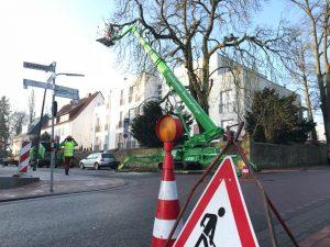 Foto Bäume Verkehrssicherungspflicht und Verkehrssicherung im Raum Osnabrück Ibbenbüren Bramsche Tecklenburg Lotte