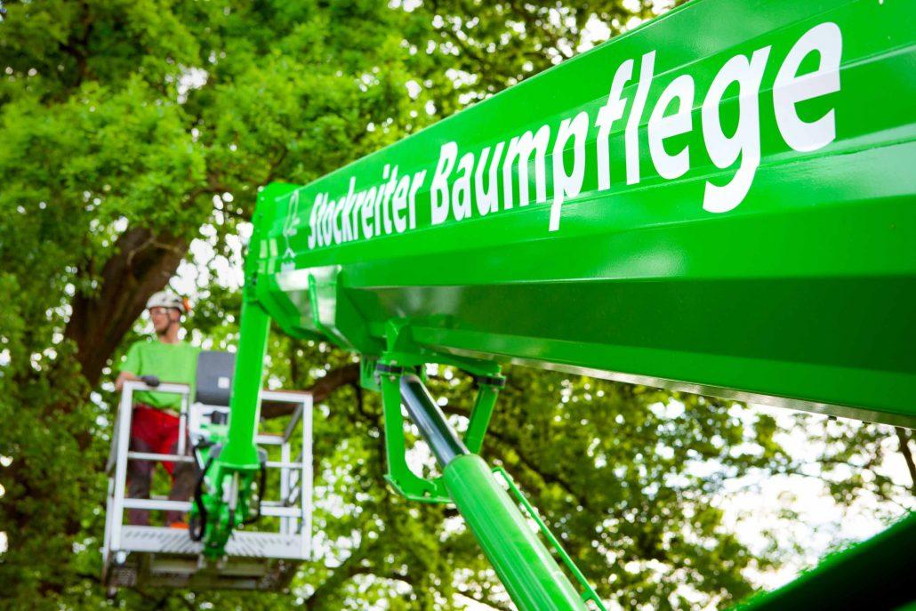 Baumkontrolle Privatgrundstück Verkehrssicherungspflicht Bäume Verkehrssicherungspflicht Bäume Privatgrundstück