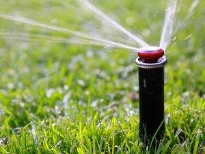 Automatische Bewässerungsanlage automatische Bewässerung und Beregnung Rasen und Beete Osnabrück und Ibbenbüren