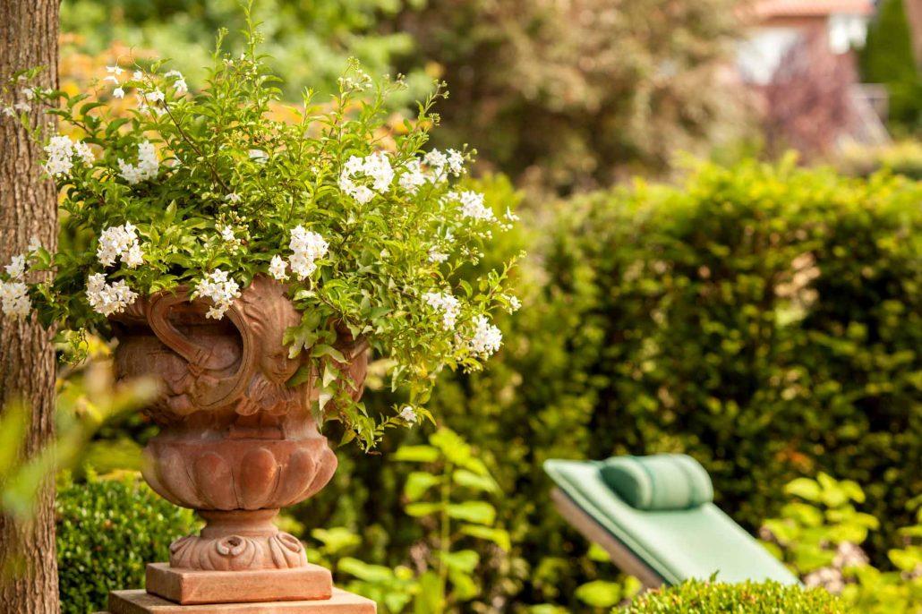 Mediterraner Garten Ibbenbüren Gartengestaltung