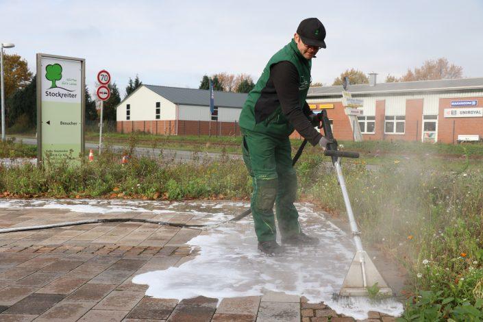 Unkrautbekämpfung Unkrautbeseitigung thermisch ohne Gift giftfrei Heißwasser Schaum Osnabrück Lotte Ibbenbüren Bramsche