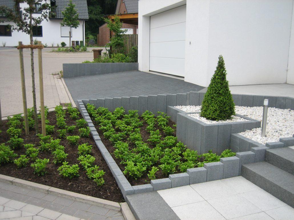 Vorgarten mit Bodendecker modern